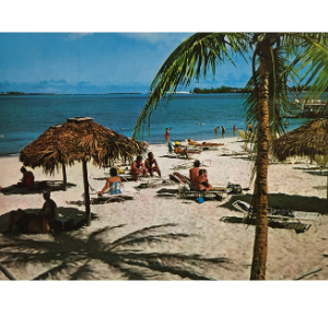 Vintage Beach Resort
